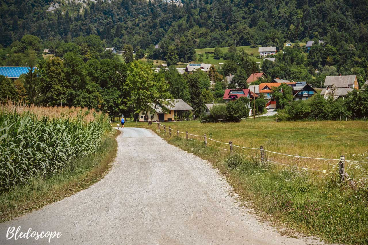 Village of Selo near Bled