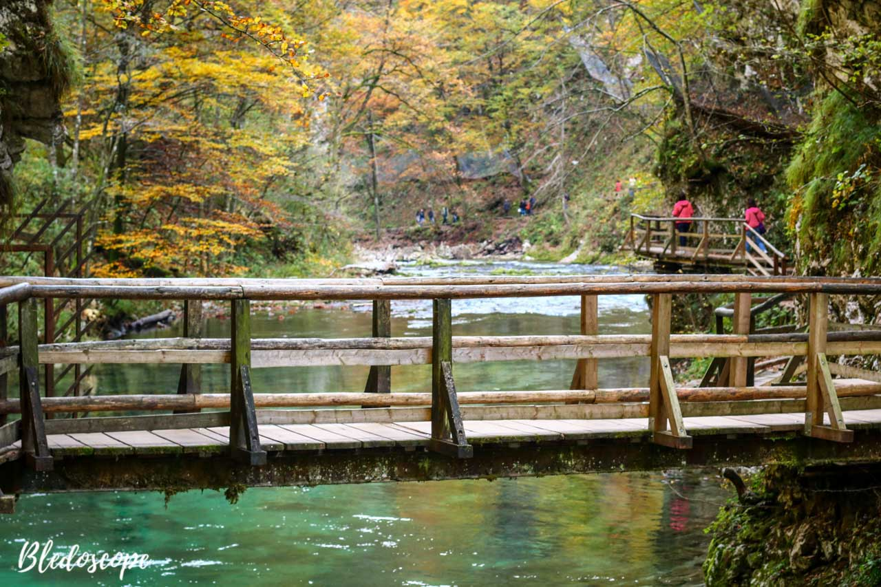 Wooden bridge in the gorge